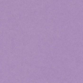 CARTULINA IRIS 50X65 185G LILA