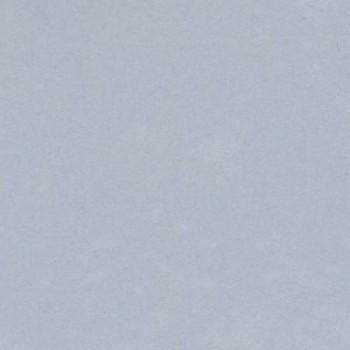 CARTULINA IRIS 50X65 185G GRIS PERLA